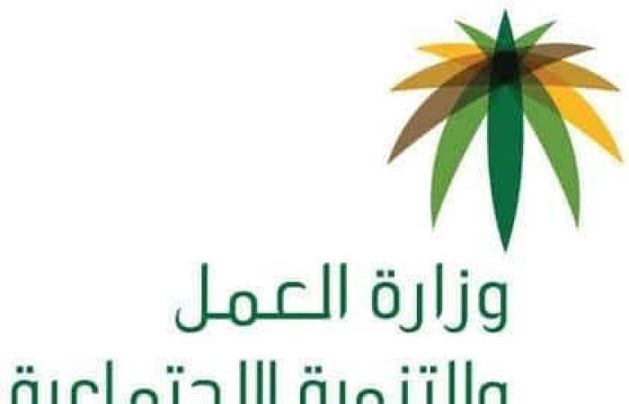 الاستعلام عن المساعدة المقطوعة 1439 لشهر ربيع الثاني و تحديث الضمان الاجتماعي من وزارة العمل والتنمية الاجتماعية