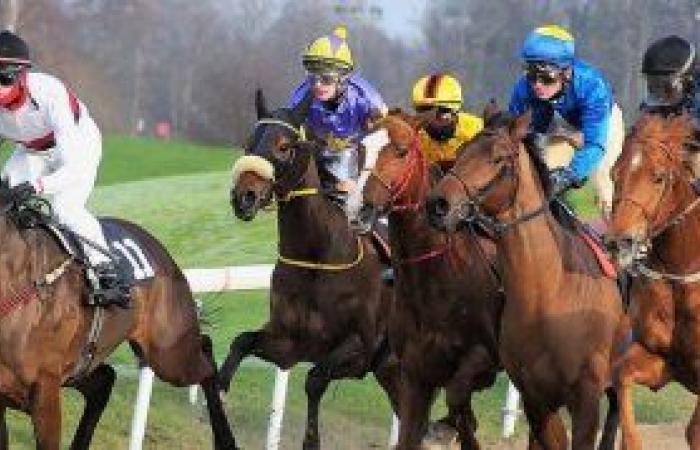 تاريخ سباق الخيول والرهان عليه .. حتى عصر الأون لاين