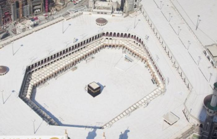 ما حكم إيقاف العمرة وزيارة المسجد النبوي؟