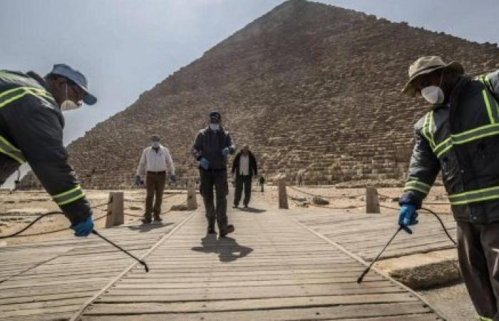 عدد حالات كورونا في مصر اليوم الخميس 28 مايو