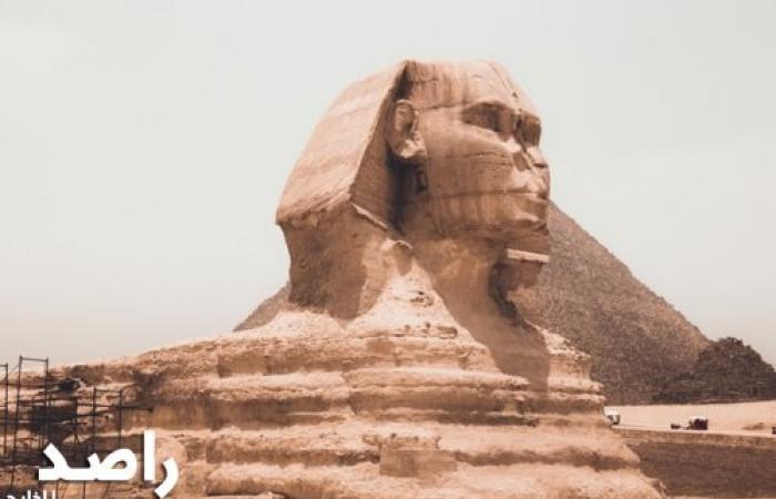 دخول أمازون إلى مصر قد يحفز الاقتصاد