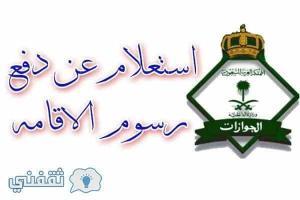استعلام سداد رسوم تجديد اقامة الان عبر مصلحة الجوازات وبوابة ابشر وزارة الداخلية