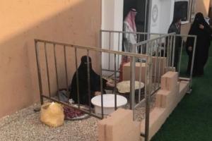 """السعودية الأن / """"إدارة الجنادرية"""" توضح ملابسات صورة جلوس المواطنة """"أم مهنا"""" في السياج الحديدي"""
