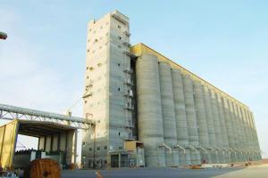 """الحبوب لـ""""الاقتصادية"""" : نعمل على 3 مبادرات في استراتيجية الأمن الغذائي"""